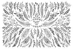 Hand sketched vector floral elements  leaves, flowers, swirls a. Nd branches. Botanical illustrations. Perfect for wedding invitations, greeting cards, quotes Royalty Free Stock Photos