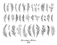 Hand sketched vector floral elements  leaves, flowers, swirls a. Nd branches. Botanical illustrations. Perfect for wedding invitations, greeting cards, quotes Royalty Free Stock Image
