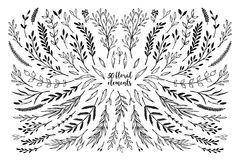 Hand sketched vector vintage elements  laurels, frames, leaves,. Flowers, swirls, branches. Wild and free. Summer collection. Perfect for invitations, greeting Royalty Free Stock Photos
