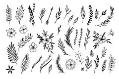 Hand sketched vector vintage elements. ( laurels, frames, leaves, flowers, swirls and feathers). Wild and free. Perfect for invitations, greeting cards, quotes Royalty Free Stock Images