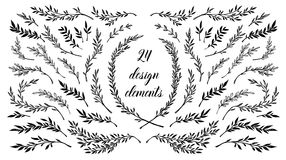 Hand sketched vector vintage elements  laurels, frames, leaves, Stock Photo