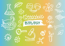 Hand sketches of biology. Stock Photography