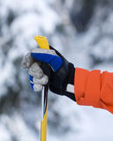 Hand and Ski Pole Royalty Free Stock Photo