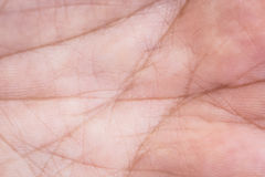 Hand skin texture Stock Images