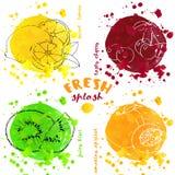 Hand skissade frukter och vattenfärgfärgstänk Arkivfoto