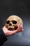 Hand With Skull Royalty Free Stock Images