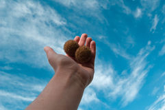 Hand in the sky 2 Royalty Free Stock Photography
