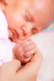 Hand the sleeping baby girl in the palm of mother Royalty Free Stock Images