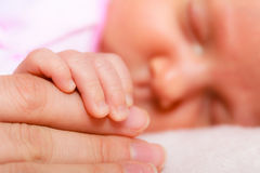 Hand the sleeping baby girl in the palm of mother. Parenting and love concept. Closeup tiny hand the sleeping baby girl in the palm of mother Royalty Free Stock Image