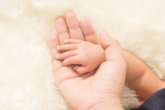 Hand the sleeping baby in the hand of mother close-up (Soft focu Stock Photo