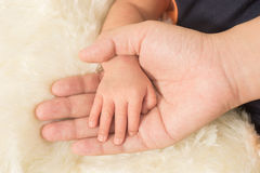 Hand the sleeping baby in the hand of mother close-up (Soft focu Royalty Free Stock Photos