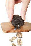 Hand slicing black truffle with wooden truffle slicer royalty free stock image