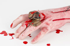 hand and snail. Stock Image
