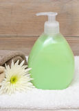 Hand Soap Dispenser Stock Image