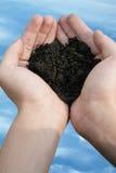 hand soil test 免版税图库摄影