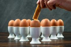 Hand som doppar rostat brödsoldaten Into Boiled Eggs i äggkoppar på en flik royaltyfri foto
