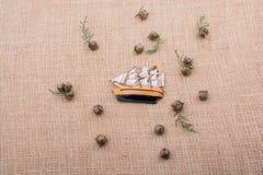 Hand - som göras att segla fartyget på kanfas Arkivbilder