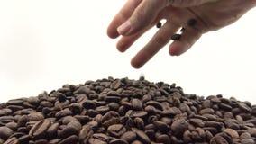 hand som 4k faller de grillade kaffebönorna Ingrediens för kaffe arkivfilmer
