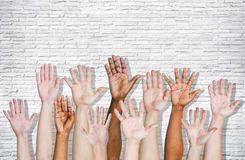 Hand som lyfts som isoleras på vit Arkivfoton