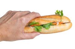 Hand som rymmer Banh Mi, vietnamesisk smörgås royaltyfria bilder