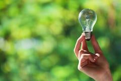 Hand som rymmer den ljusa kulan på naturbakgrund Royaltyfri Foto