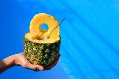 Hand som rymmer den ovannämnda blåa simbassängen för ny ananas arkivbild