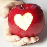 Hand som rymmer det röda äpplet med hjärta Fotografering för Bildbyråer