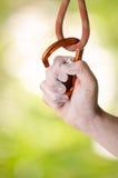 Hand som rymmer en carabine på ett rep Klättringutrustning som isoleras på en vit bakgrund Royaltyfri Foto