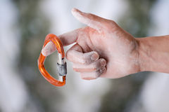 Hand som rymmer en karbin på ett rep Klättringutrustning på en vit bakgrund Arkivbild