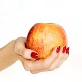 Hand som rymmer ett äpple royaltyfri fotografi
