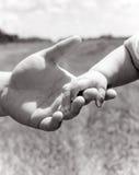hand som rymmer little förälder Royaltyfri Bild