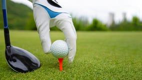 Hand som sätter golfboll på utslagsplats i golfbana royaltyfria bilder