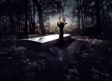 Hand som stiger ut från graven Arkivfoto