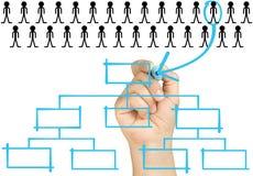Hand som väljer det organisatoriska diagrammet för kandidat Royaltyfri Foto