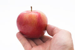Hand som väljer ett äpple Royaltyfri Fotografi