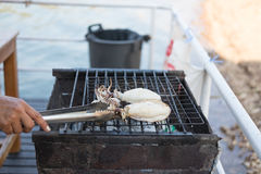 Hand of someone are gril fresh squid on hot stove with ice tong Stock Photos