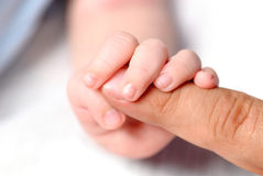 Hand of son Royalty Free Stock Photography