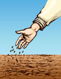 Hand sowing seed in plowed field. Vector drawing Royalty Free Stock Image