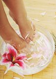 Hand spa and beauty treatment Royalty Free Stock Images