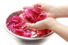 Hand spa met bloemblaadjes Stock Foto