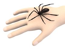 Hand with spider Stock Photos