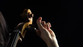Hand tune on the cello. Black background. Close up. Hand is spinning a wooden lever on the cello tunes a musical instrument. Black background. Close up stock footage