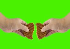 Hand split stroop wafle Stock Image