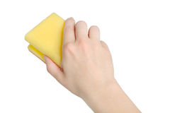 Hand with sponge Stock Images