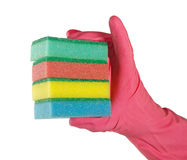 Hand with sponges Stock Image