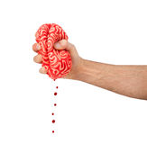 Hand squeezes a rubber brain Stock Image