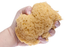 Hand Squeezing Sponge Stock Images