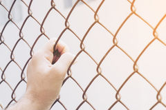 Hand and steel cage on vintage tone Stock Photos