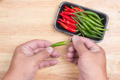 Hand striped Red Hot Chili Peppers Stock Image