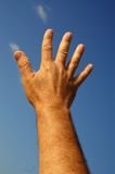 Hand in the sun Royalty Free Stock Photo